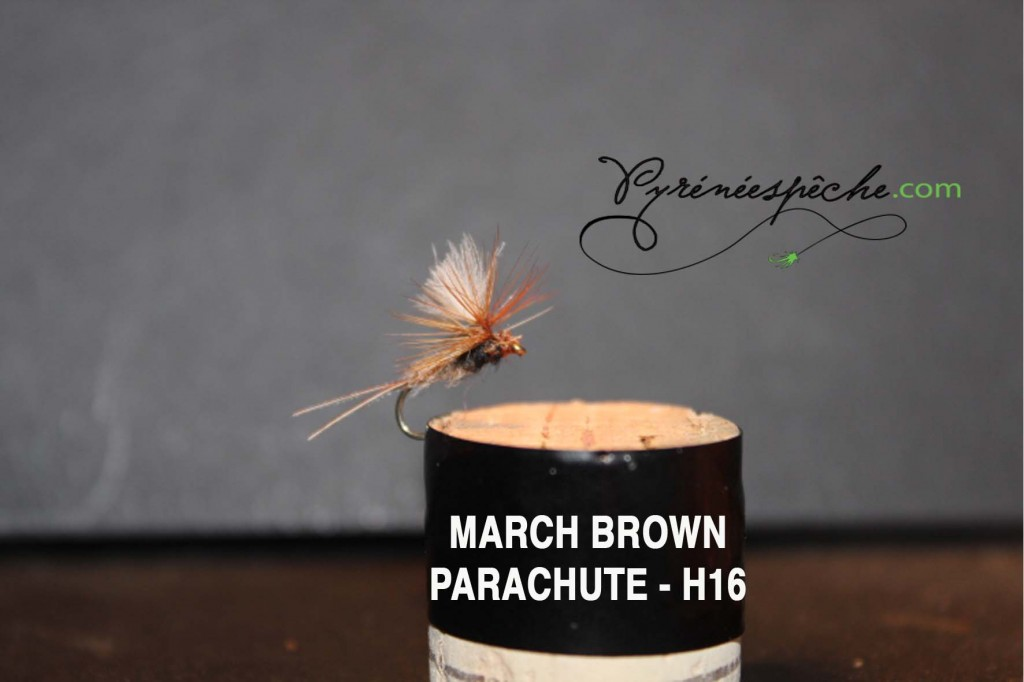 March Parachute